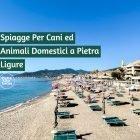 immagine di copertina dell'articolo sulle spiagge per cani a Pietra Ligure